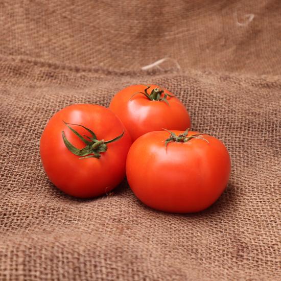 Tomate 67/82 Fra