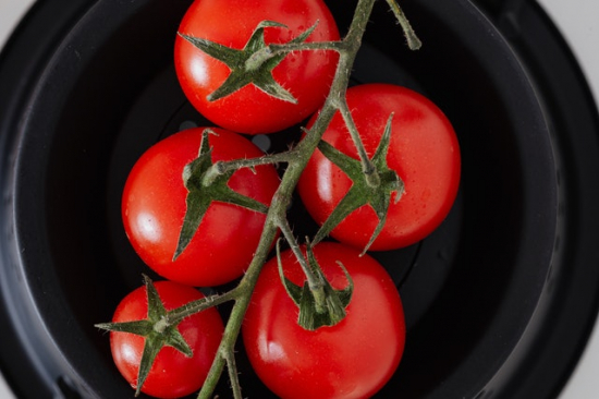 Tomate grappe FRA