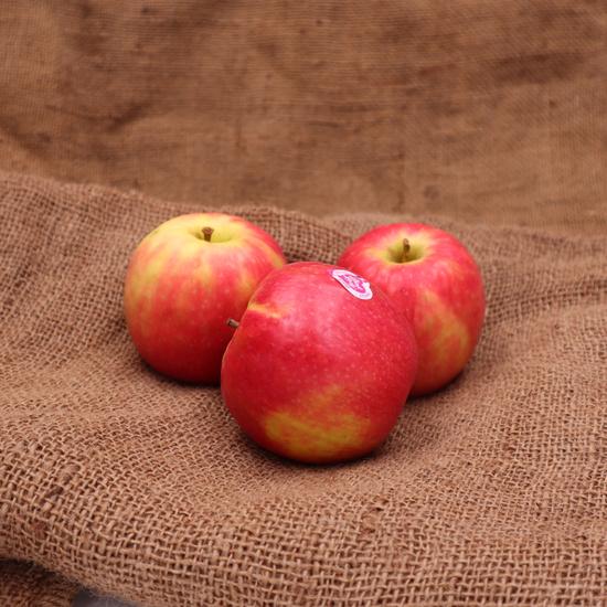 Pomme pink lady FRA