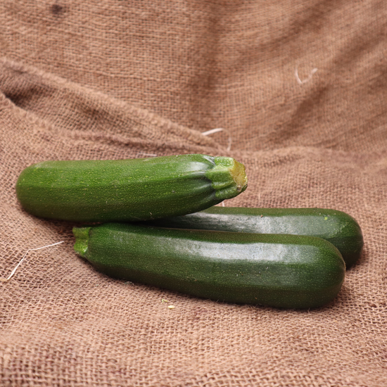 Courgette FRA