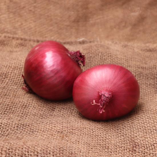 Oignon rouge NZ